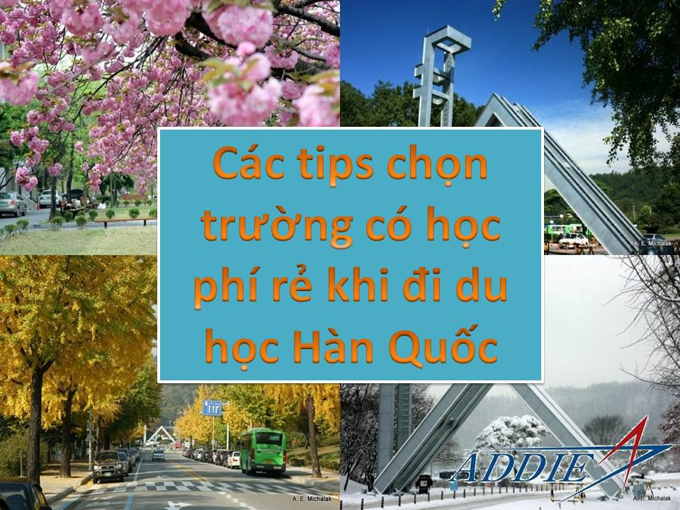 cac tips chon truong hoc phi re